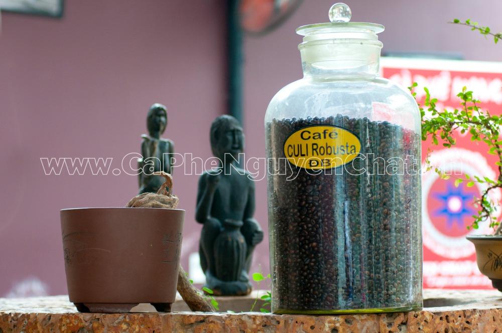 Cafe hạt rang Robusta