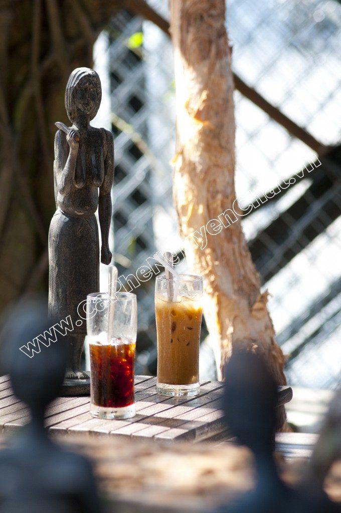 Uống cafe nguyên chất cũng có thể ngăn ngừa được nhiều bệnh khác