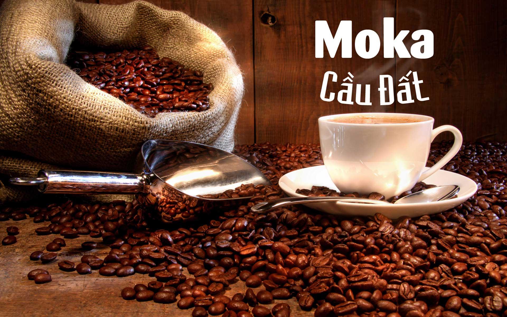 Cà phê Moka nguyên chất