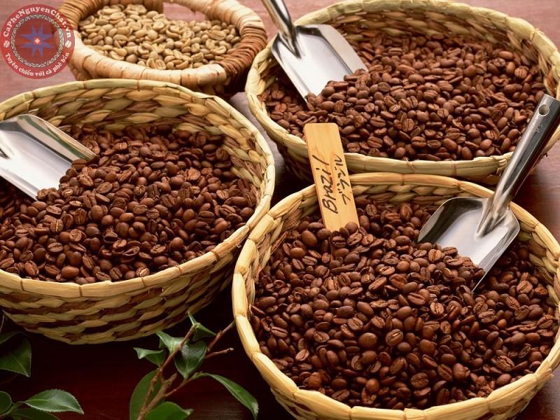cafe sạch sài gòn có giá cả khác với cà phê bẩn