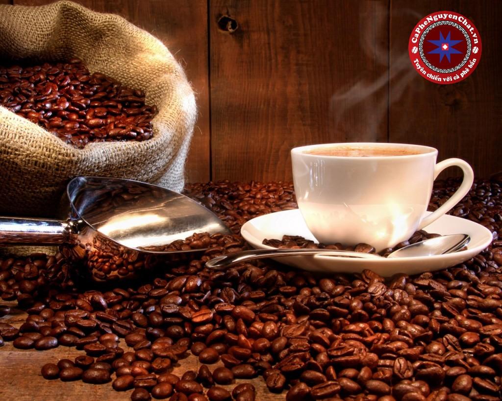 Cà phê bẩn, kém chất lượng đang tràn lan trên thị trường. Vậy làm thế nào để kiểm tra được chất lượng cà phê bạn đang uống? Ly cà phê đó có thực sự là cà phê? Nơi nào cung cấp cà phê thực sự nguyên chất? Hãy để Nguyen Chat Coffee hướng dẫn cách nhận biết loại cafe thực sự chất lượng và an toàn nhé