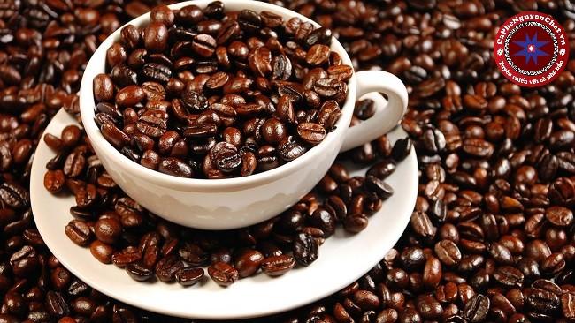 Muốn mua cafe nguyên chất tại đâu để đảm bảo đó thực sự là cafe sạch, tốt cho sức khỏe ? Cùng theo chân Nguyen Chat Coffee để tìm hiểu nhé !