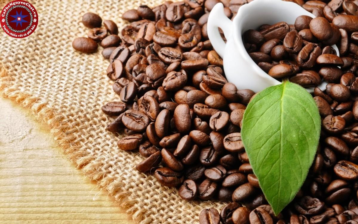 Tìm hiểu những điều cần biết khi mua cafe nguyên chất
