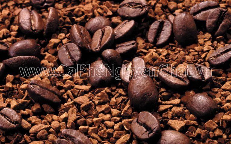 Nguyen Chat Coffee cam kết cung cấp các sản phẩm coffee chất lượng nhất, thơm ngon nhất với giá cả cực tốt