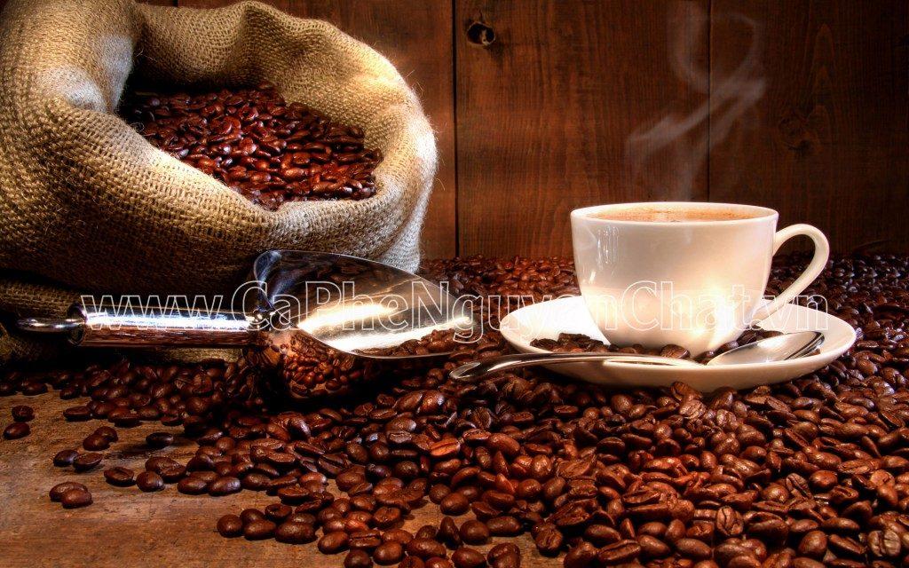 Cà phê rang xay ngon và sạch