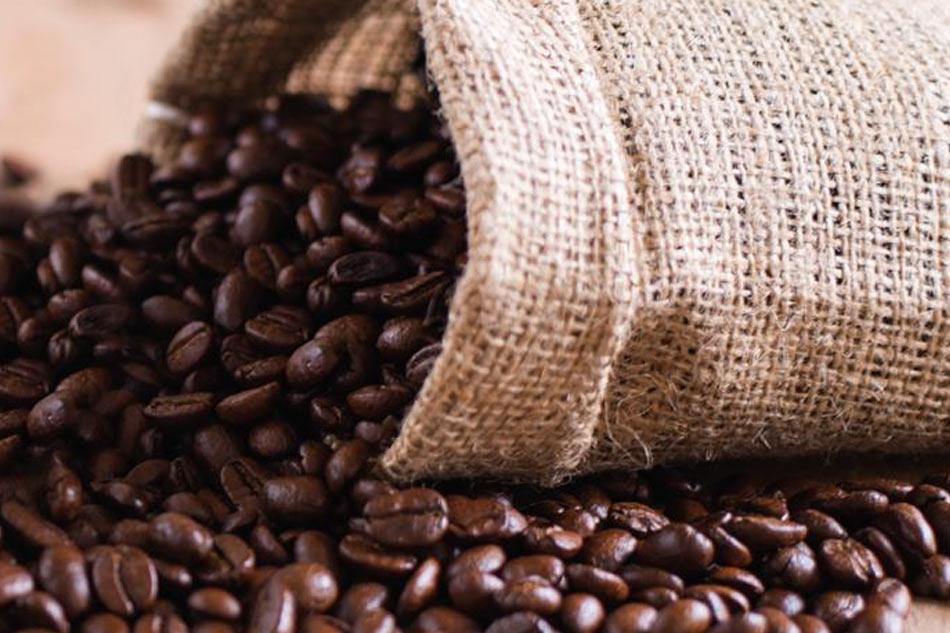 Giá cafe hạt hôm nay (26/3) hồi phục nhẹ đầu tuần
