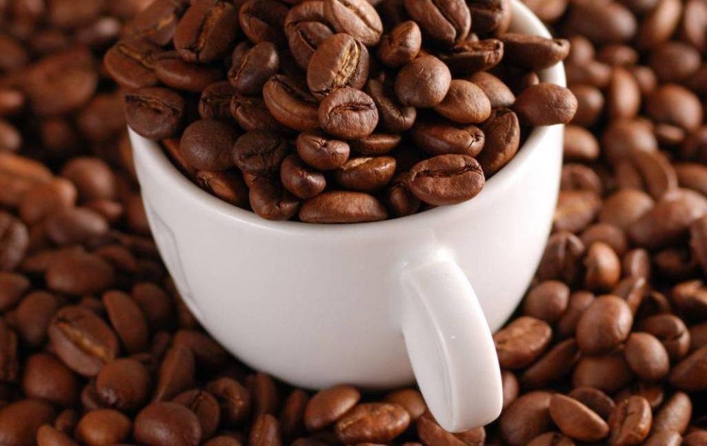 Nguồn cung cấp cà phê hạt chất lượng, giá tốt